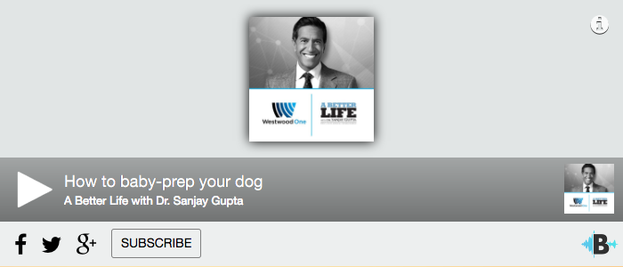 (AUDIO) CNN's Sanjay Gupta On How To Baby-Prep Your Dog