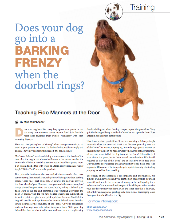 a favorite from american dog magazine