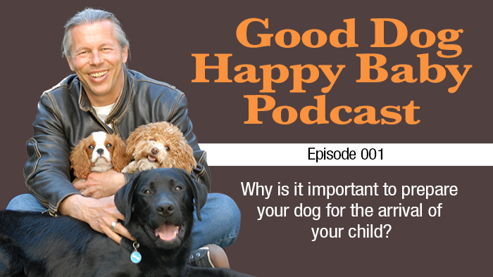001: Why Is It Important To Prepare My Dog For My Baby?