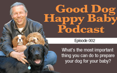 002: What's The Most Important Thing I Should Do To Prepare My Dog For My Baby?