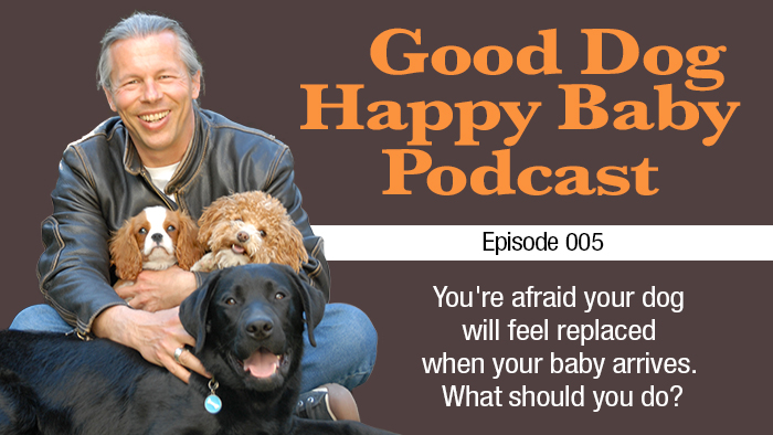 005: Will My Dog Feel Jealous & Replaced When My Baby Arrives?