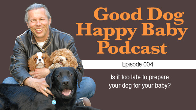 004: Is It Too Late To Prepare My Dog For My Baby?