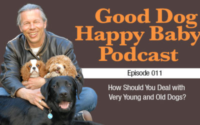 011: How Should You Deal with Very Young and Very Old Dogs?