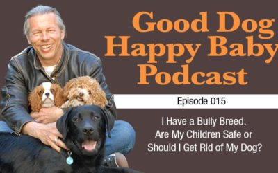 015: Are Your Children Safe with Your Bully Breed?