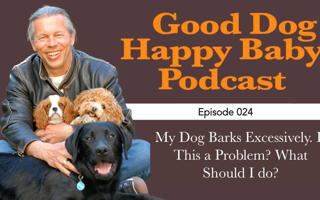 GDHB024: My Dog Barks Excessively. Is This Going To Be a Problem for My Baby? What Can I Do?